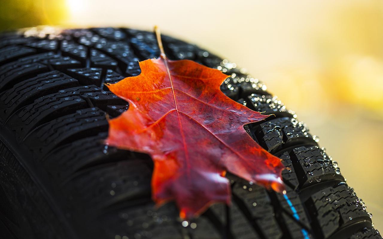 Пора переобуваться: календарь замены шин