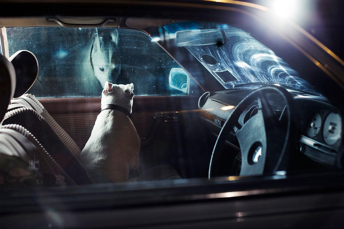 считалось, картинка одинокий парень с машина вам обойтись
